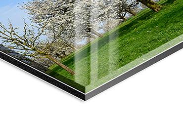 Fine Art hinter Acrylglas