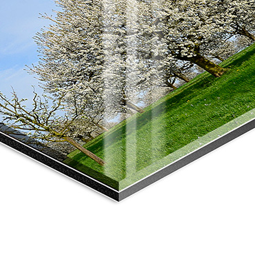 FineArt hinter Acrylglas